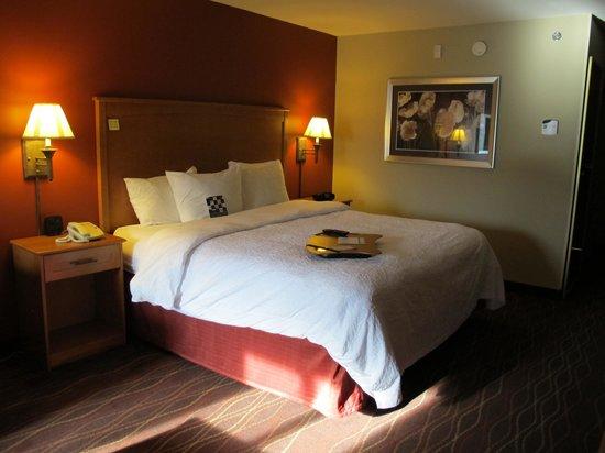 Hampton Inn Twin Falls Idaho: King bed in room 243.