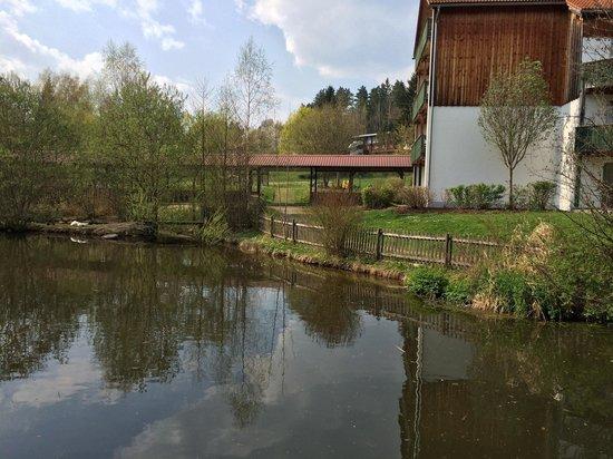 """Teich beim """"Sporthotel am Pfahl"""""""