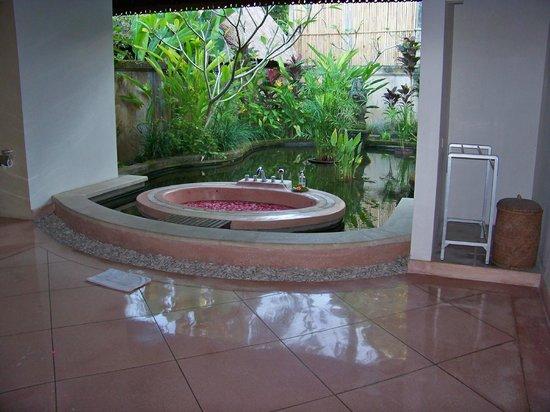 Villa Taman di Blayu : sdb