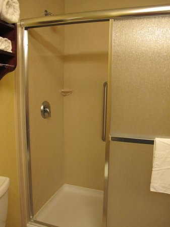Hampton Inn Pendleton: Roomy shower in room 313.