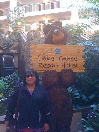 Lake Tahoe Resort Hotel : The Bear.....
