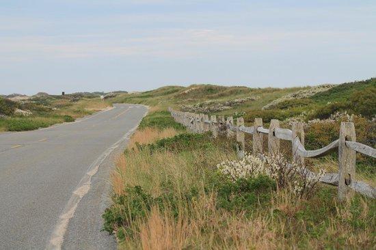 Cape Cod National Seashore: scenic drive