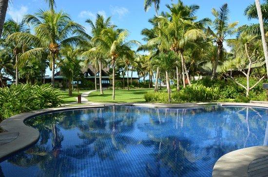 Paradise Sun : Pool