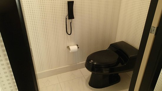 Elara, a Hilton Grand Vacations Club: why do they have a phone next to the toilet??