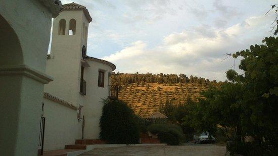 Cortijo Las Salinas: Coucher de soleil sur la colline d'oliviers