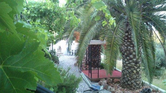 Cortijo Las Salinas: Jardin zen