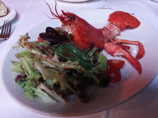 El Telegrafo: The BEST lobster salad in the world ! And I've sampled many!