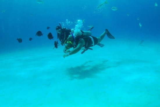 Stuart Cove's Dive Bahamas : Hayley Jo Teaching SCUBA