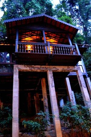 Berjaya Langkawi Resort - Malaysia: Exterior view of rainforest Chalet