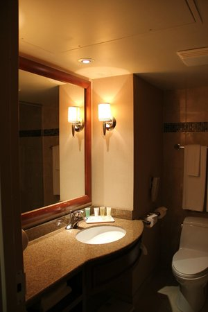 Hotels Gouverneur Montreal: Salle d'eau
