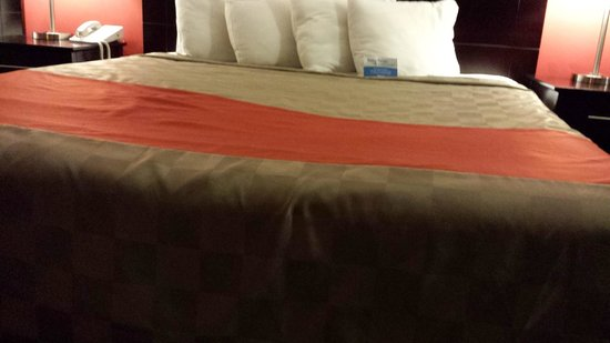 Red Roof Inn & Suites Monterey : Caved In Beds