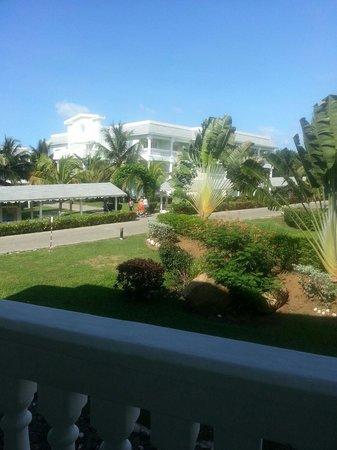 Grand Palladium Lady Hamilton Resort & Spa: View from balcony