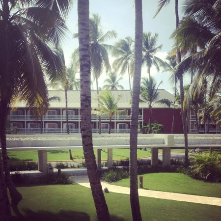 Barcelo Bavaro Beach - Adults Only: HOTEL GROUNDS