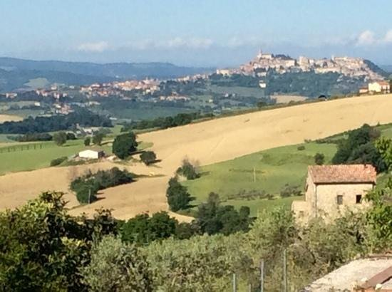 view from Agriturismo Acquaviva towards Todi