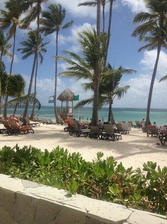 Barcelo Bavaro Beach - Adults Only: BEACH