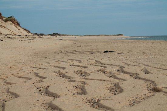 Herring Cove Beach : Untouched sand