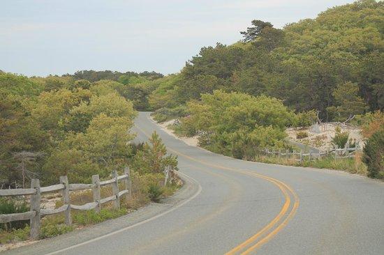 Herring Cove Beach : scenic view driving towards the beach