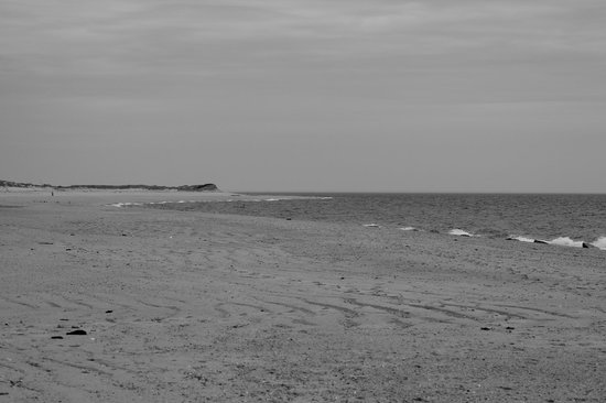 Herring Cove Beach : quiet afternoon