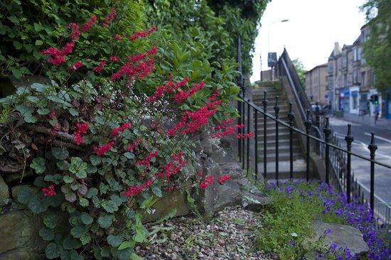 Number 27 Morningside: Garden below No. 27