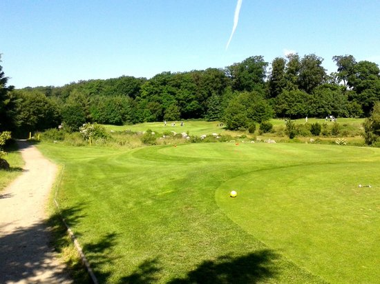 Jakobsberg Hotel- & Golfresort: A par 3 hole from the tee