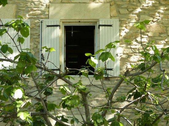 Le Mas des Vertes Rives: vue sur chambre