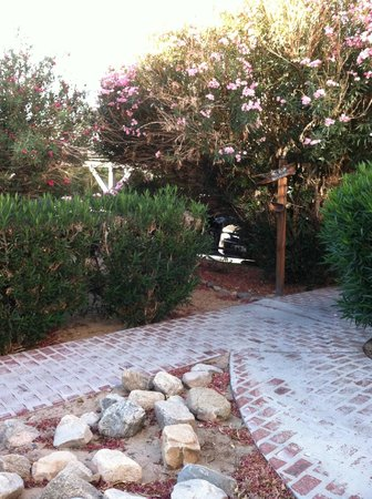 Sunnyvale Garden Suites Hotel - Joshua Tree National Park: Walk way to our room
