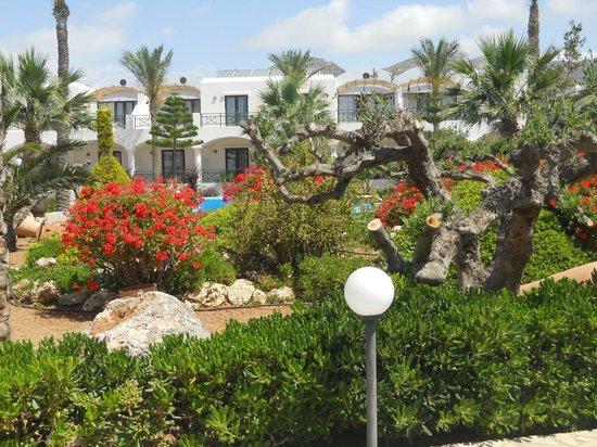 Ostria Resort & Spa : les chambres nichées dans un écrin de plantes méditerranéennes.
