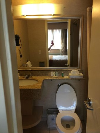 Comfort Inn Lower East Side: Bathroom