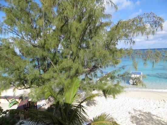 Osprey Beach Hotel : Beachfront balcony view