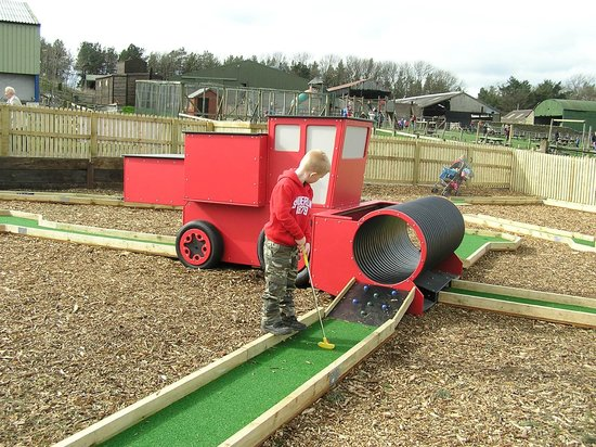 Hall Hill Farm: Crazy Golf