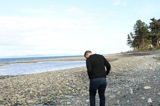 Bella's Beachfront B&B : Enjoying the scenery
