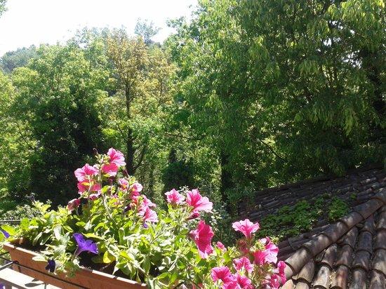 Le Querce del Vareglio : dal balcone