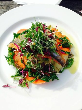 Strickland Arms: Bass and Vegetable salad Lunch
