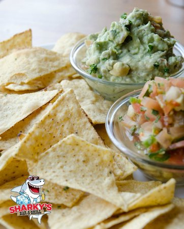 Sharky's Bar and Grill 1 : Home made Guacamole and Pico dip and chips