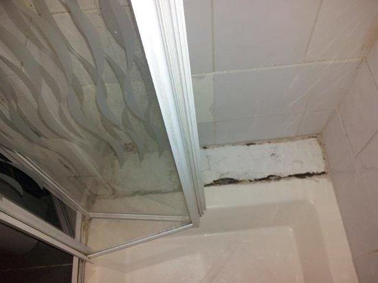 Premier West Hotel: Mould in bathroom