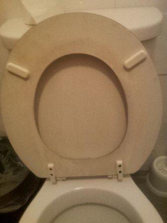 Premier West Hotel: Streaky toilet seat