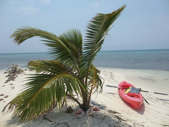 Hatchet Caye Resort : peninsula