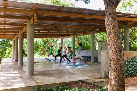 Hix Island House: Daily Yoga Class