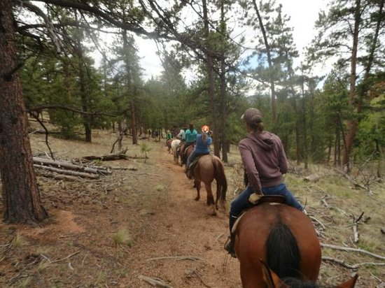 Tarryall River Ranch: Horseback riding trail. Totally awesome experience