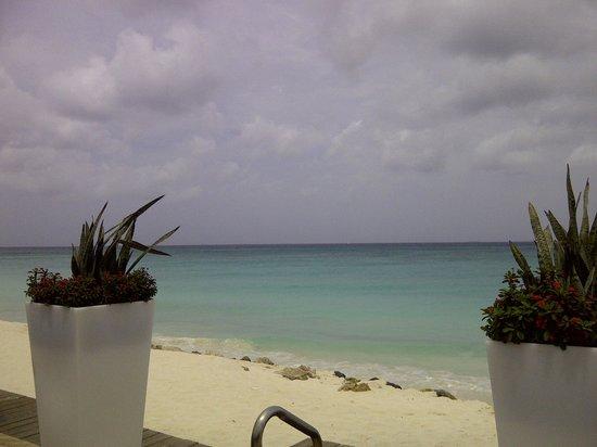 Tamarijn Aruba All Inclusive : View from main Pool area