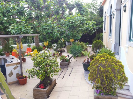 Hotel Nova Sintra: Terrasse