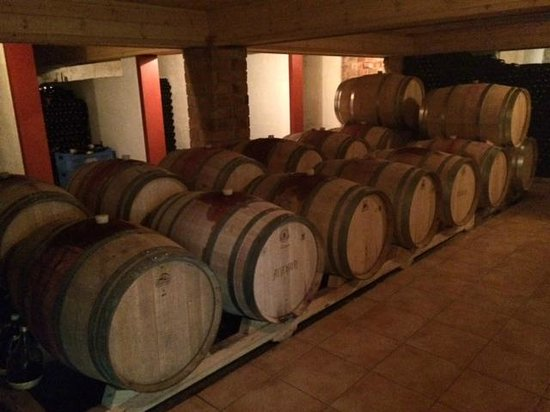 Paphos Wine Tours Day Tours: Wine touring in Cyprus