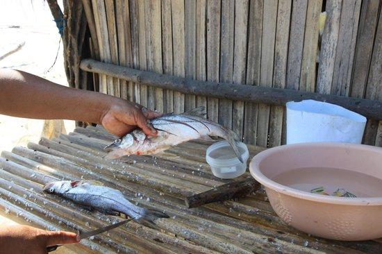 Laguna de Manialtepec: Fresh fish lunch on the Lagoon