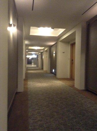 Hotel PJ Myeongdong: 廊下。突き当りにBiz centerあり。