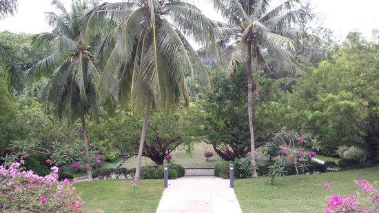 Sofitel Singapore Sentosa Resort & Spa: Garden around the hotel