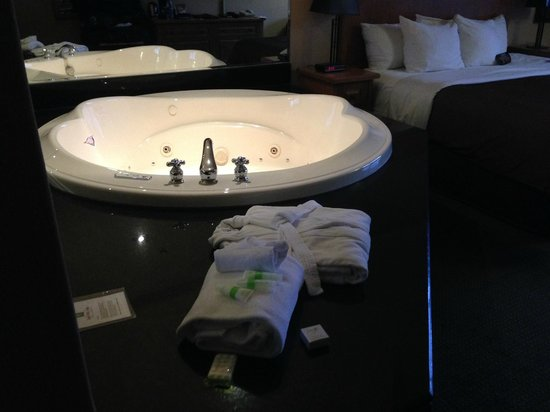 Banff Park Lodge Resort and Conference Centre: jacuzzi next to the bed !