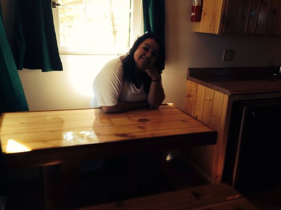 Mackinac Lakefront Cabin Rentals: Cute little table