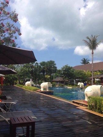 Bandara Resort & Spa : Laying pool side !! Absolutley beautiful