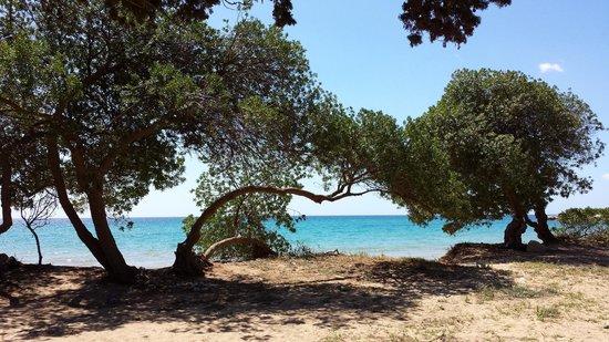 Cassibile, Italia: Spiaggia