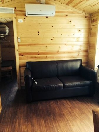Boston/Cape Cod KOA : Pull out leather sofa with bed (heater/air cond above)